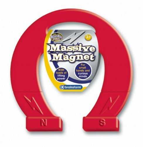 Neu Kinder Pferdeschuh Form Enorm Magnet Exploration Spielsachen Packung Zu 12