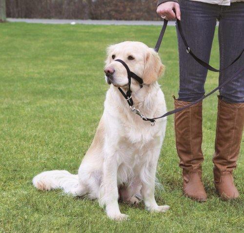 Trixie 13007 Top Trainer Ausbildungsgeschirr, XL-kurz: 40 cm, schwarz - Trainer Halsband Dog