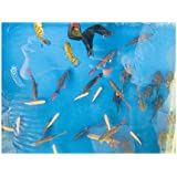 Doggy King Fish Tank(Color Multi,Material:Glass)