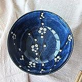 ChenDz Schüssel nach Hause essen nette japanische keramische Schüssel Reisschüssel
