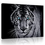 FORWALL Bilder Canvas Tiger O1 (100cm. x 75cm.) Leinwandbilder Wandbild AMFPP10202O1