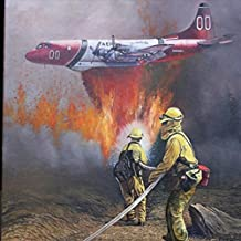 Cal Fire to the Rescue