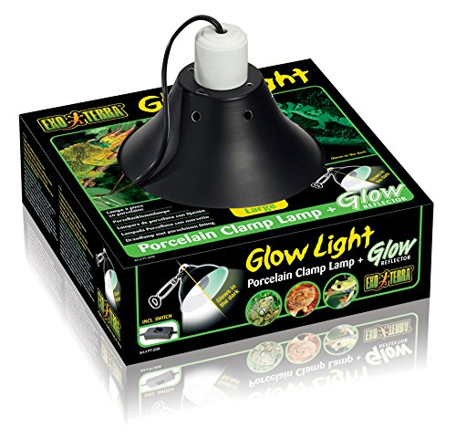 Exo Terra Porzellanklemmlampe Glow Light für Glühlampen bis 200W