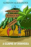 #3: Volcanoes, Jungles and Leeches: A Glimpse of Indonesia