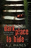 Dark Place to Hide by A J Waines