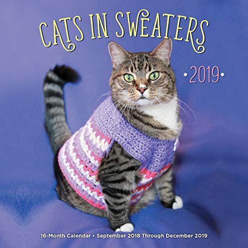 Cats In Sweaters 2019: 16-Month Calendar - September 2018 through December 2019 (Calendars 2019)