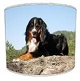 Premier Lampshades - 30 cm Tabla Beremese perro de montaña para niños cortinas de la lámpara