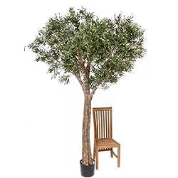 Set 2 x Deko XXL-Olivenbaum, getopft, uv-sicher, 240 cm - Künstlicher Olivenbaum / Kunstbäume - artplants