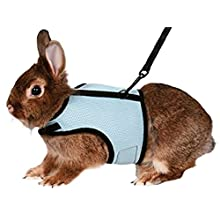 Trixie 61513 Harness for Small Animals for Rabbits Nylon 14 - 19 cm / 25 - 32 cm (Assorted Colors)