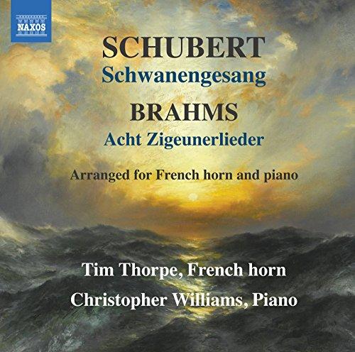 Schwanengesang, D. 957 (Arr. T. Thorpe for Horn & Piano): No. 13, Der Doppelgänger