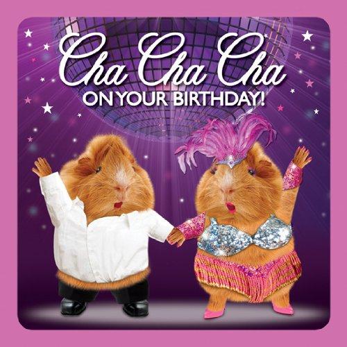 Meerschweinchen Karte - Geburtstagskarte - CHA CHA CHA