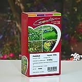Gondian - Graines de Phacélie. Engrais vert, 500 g.