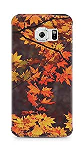 Amez designer printed 3d premium high quality back case cover for Samsung Galaxy S6 Edge (leaves autumn )