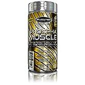 Phospha Muscle 140 softgels - 51wO2xJ5GVL. SS166