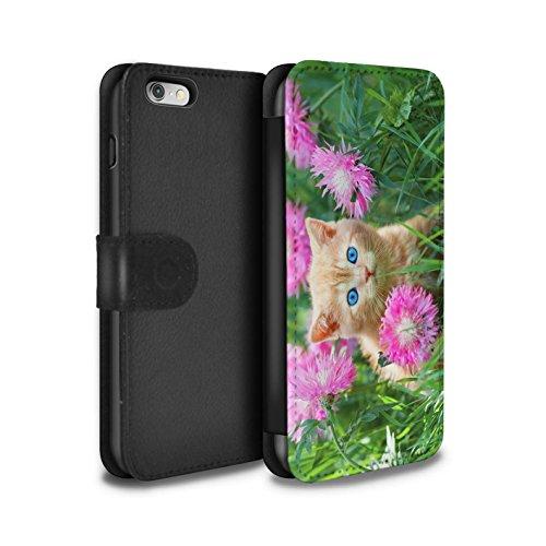 Stuff4 Coque/Etui/Housse Cuir PU Case/Cover pour Apple iPhone 4/4S / High five Design / Chatons mignons Collection Jardin