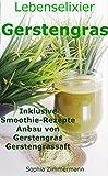 Lebenselixier Gerstengras: Wundermittel der Natur (Superfood, Anti-Aging, Depression,Cholesterin, Chlorophyll,Entgiftung,Darm, Herz-Kreislauf,Krebs, Entzündung,Energie,Smoothie)