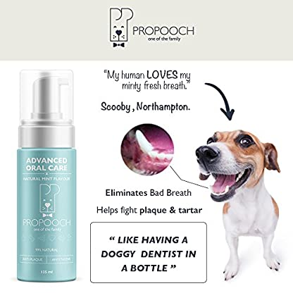 Pro Pooch Dog Breath Freshener - Combat Bad Breath, Tartar & Plaque Build Up w/Dog Mouthwash - Fresh Breath & Safe Oral… 4