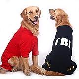 shanzhizui Hübscher Großer Hundemantel Großer Hunde-Pullover Goldener Apportierhund Labrador Sibirischer