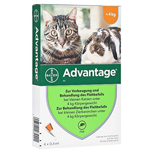 Advantage 40 mg für kl.Katzen und kl.Zierkaninchen 4X0.4 ml (Katze Floh-behandlung)