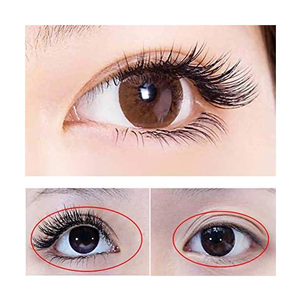 Daxoon Eyelash Growth Enhancer Serum para una extensión de pestañas Natural