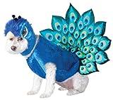 Animal Planet Pfau Hund Kostüm, multicolor