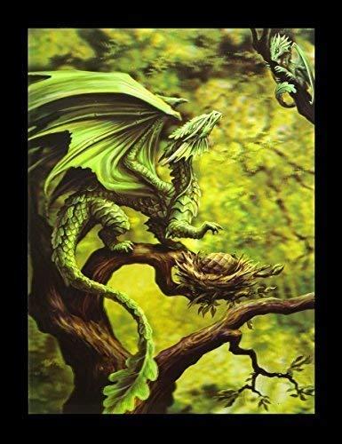 Anne Stokes 3D Bild Drache - Forest Dragon | Fantasy Gothic grün Poster Druck (Drachen Poster)