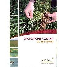 Diagnostic des accidents du blé tendre