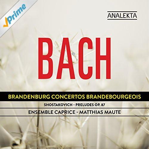 Concerto No. 6, BWV 1051: III. Allegro