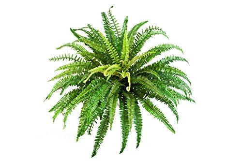 Artplants Helecho Artificial Lean con 76 Hojas, Verde, Ø 85cm, 60cm - Planta Textil/decoración