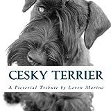 Cesky Terrier: A Pictorial Tribute