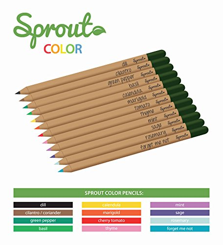 sprout-color-set-8-pastelli-da-piantare