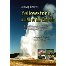 Yellowstone -- A walk on the wild side - English (English Edition)