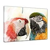 Kunstdruck - Aquarell - Papageien II - Bild auf Leinwand 60 x 50 cm einteilig - Leinwandbilder - Bilder als Leinwanddruck - Tierwelten - Malerei - Vögel - Zwei Papageien