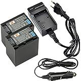 DSTE 2-pack Rechange Batterie et DC04E Voyage Chargeur pour Sony NP-FV100 DCR-SR15 SR21 SR68 SR88 SX15 SX21 SX44 SX45 SX63 SX65 SX83 SX85 HDR-CX105 CX110 CX115 CX130 CX150 CX155 CX160 CX190