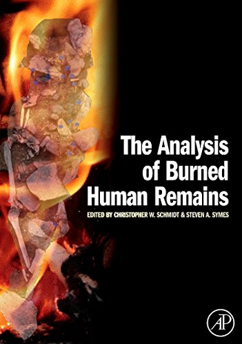 an analysis of the humanities