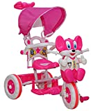 Wave Mart Baby Tricycle Rock and Roll (P...