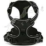 #5: Dog Harness no Pull Padded Easy Fit Puppy Chest Harness Car With Handle Front Clip Adjustable Reflective Breathable Soft Mesh Lightweight Outdoor Training Walking Comfort Control for Large Dogs Size :-Medium 1 Piece Color May Vary