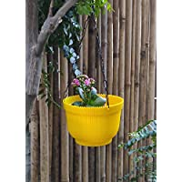 Wonderland (Set of 2) Hanging Basket with Chain and Drain Tray Attached in Yellow Colour