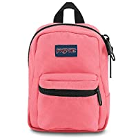 Jansport Unisex Lil Break Backpack - Pink JS0A32TT53Y