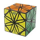 HJXDtech- Nouveau!! Plusieurs Axes lanlan créatif Fleur Cube difforme Limited Corner pivoter la Magie Cube (12-Axe)