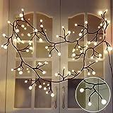 Lichterketten innen, TOFU LED Lichterkette Kugeln wasserdicht, warmweiße Weihnachtsbeleuchtung, romantische Deko für Fenster Weihnachten, Weihnachtsbaum, Schlafzimmer, Garten, Balkon, Terrasse, Hochze