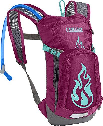 CamelBak 1155502900 - Pack y bolsa de hidratación para ciclismo, 33 x 15 x 11 cm, 1.5 l, multicolor