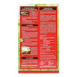 COMPO SAAT® RasenReparaturMix Samen&Dünger, Rasenpflege zum Säen und Düngen in einem Arbeitschritt, für eine gelungene Rasenreparatur, 1,2 kg für 50 m² - 2