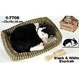 DonRegaloWeb - Peluche con apariencia real de un gato en color blanco y negro con movimiento y canasto.
