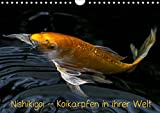Nishikigoi - Koikarpfen in ihrer Welt (Wandkalender 2019 DIN A4 quer): Koikarpfen noch einmal zum genießen (Monatskalender, 14 Seiten ) (CALVENDO Tiere)