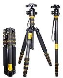 koolehaoda Q-666c Profesional Fotografie Stativ Einbeinstativ Kit & Kugelkopf Compact Travel für DSLR Kamera Canon Nikon Sony