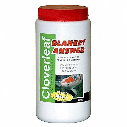 cloverleaf-blanket-answer-800g