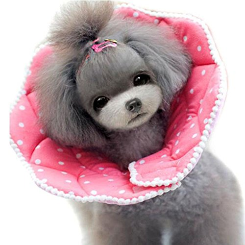 Bolbove Pink Dots Pet Weich & Stylisch Konus Recovery-für Hunde & Katzen, 3#