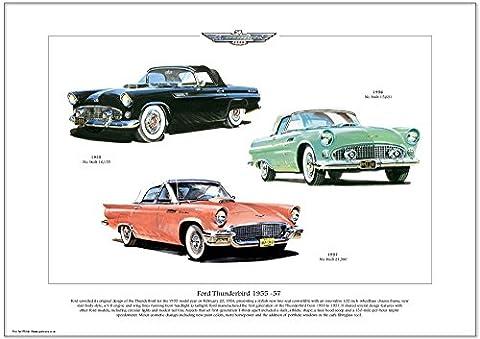 FORD THUNDERBIRD A3-der ersten generation 1955 1956 & 1957