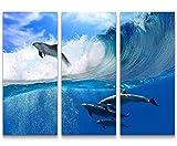Paul Sinus Art Leinwandbilder | Bilder Leinwand 130x90cm spielende Delfine im Meer